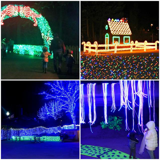 #zoolights