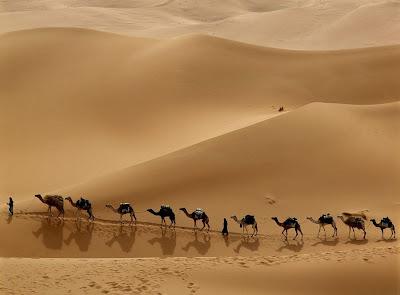 http://2.bp.blogspot.com/-lwcLzXRiq_U/Tms2hOlQLII/AAAAAAAAET4/Aud2KFzxtGI/s400/camel-caravan-libya-wallpaper.jpg