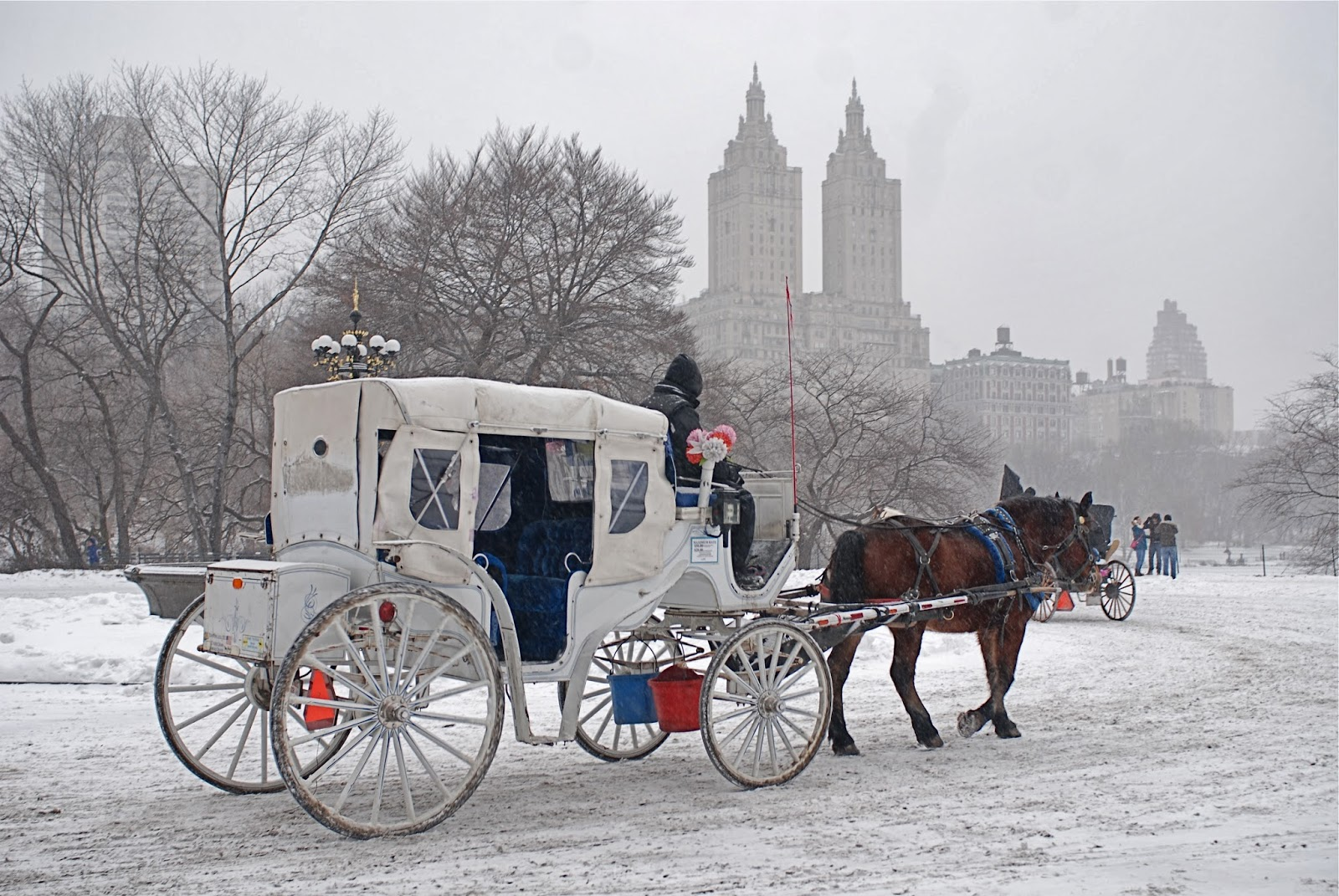 Central Park Horse Carriage Ride New York Christmas Ornament engetic.nl