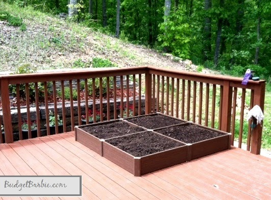 Budget Barbie Container Gardening On The Deck But With An Above