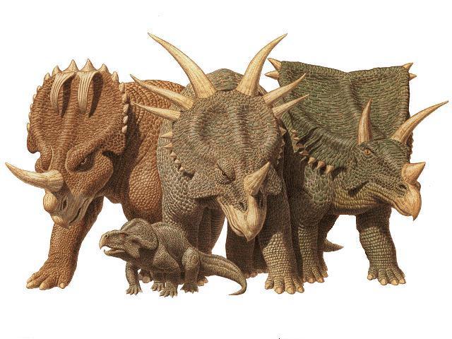 динозавров и их названия