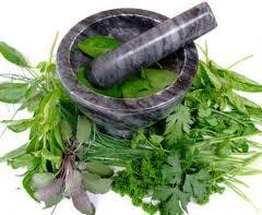 Un amestec de plante util in esofagita  cronica