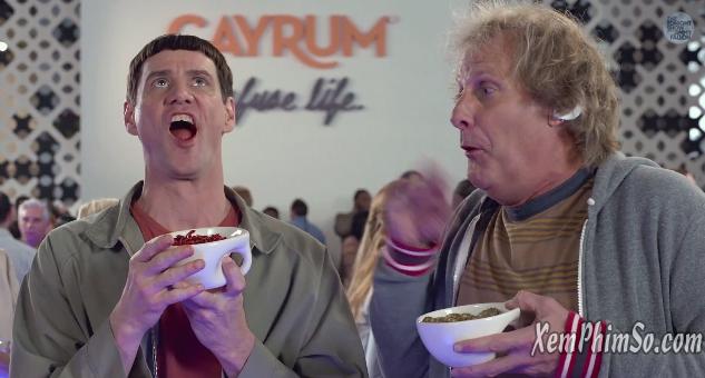 Siêu Ngốc Gặp Nhau xemphimso Dumb and Dumber To Trailer