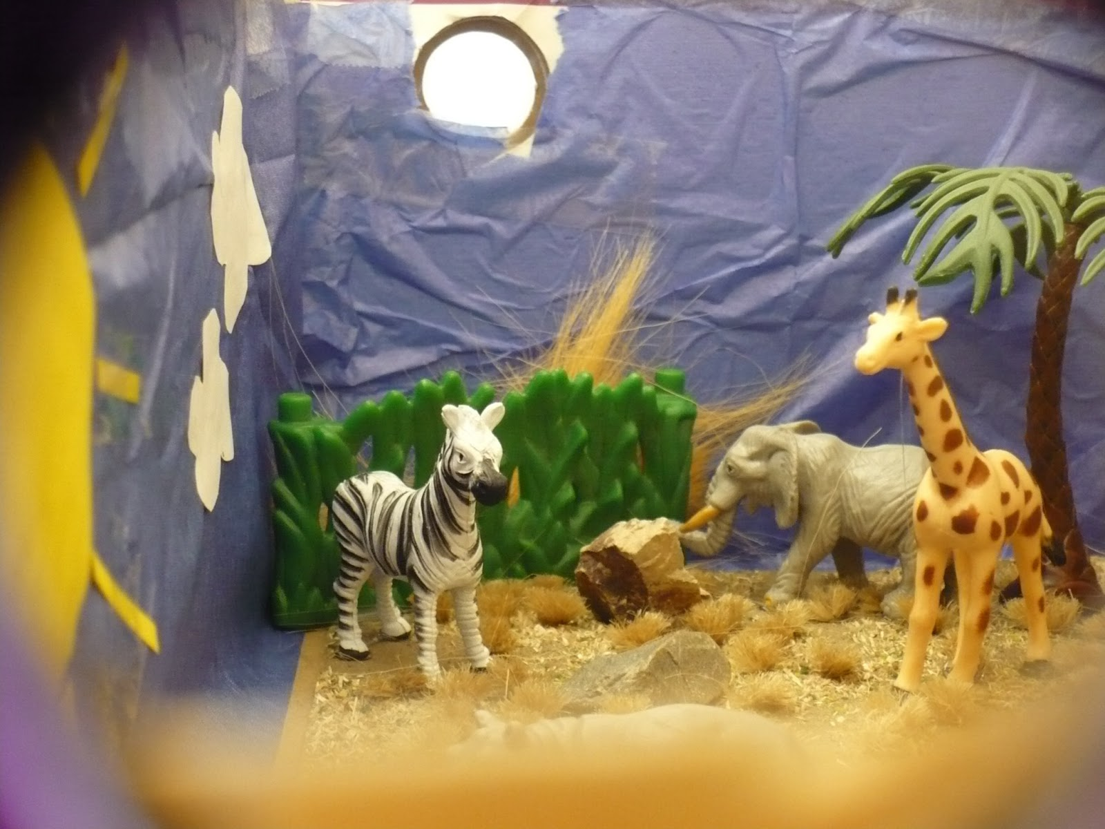 biome in a box Students will learn about biomes in science class a biome includes the animals, plants and weather conditions that are found in one particular region.