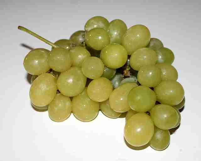Zekayı geliştiren besinler (üzüm suyu)