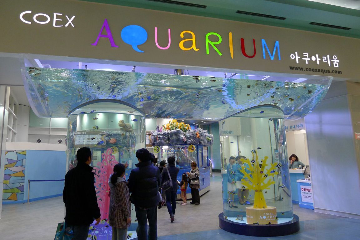 Love Korea Coex Aquarium