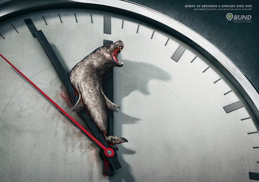 40 Of The Most Powerful Social Issue Ads That'll Make You Stop And Think - Every 60 Seconds a Species Dies Out. Each Minute Counts