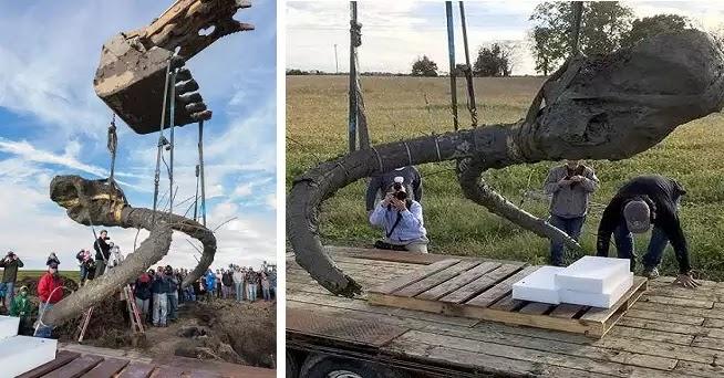 Ένας αγρότης την ώρα που έσκαβε ένιωσε κάτι μέσα στις λάσπες. ΑΥΤΟ που έβγαλαν από κει, θα το θυμούνται για χρόνια!