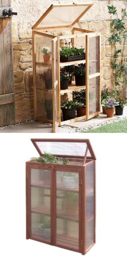 Beautiful Mini Greenhouse