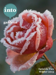 Got an ipad? Check out this garden app!