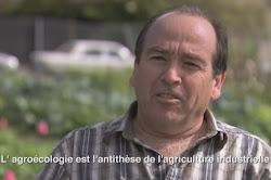 """Ing.agrón.Miguel Altieri, """"Agroecología: La ciencia de la Agricultura Sostenible"""""""