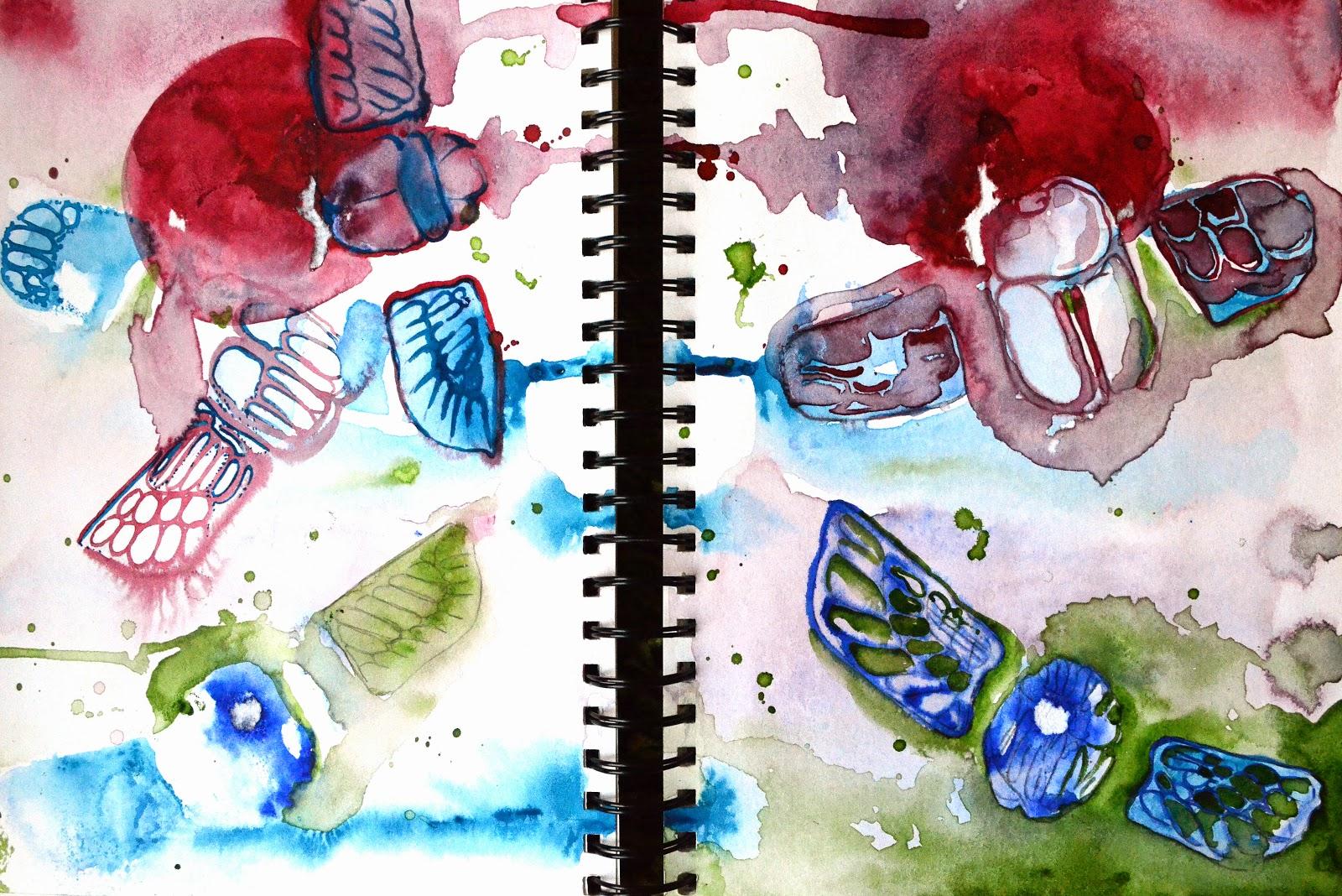 Hannah Redden Bugs in Watercolour