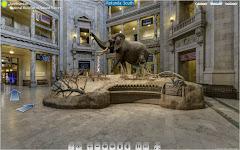 Εικονική περιήγηση στο Μουσείο Φυσικής Ιστορίας - Ουάσινγκτον, ΗΠΑ