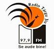 Radio Târgu-Jiu