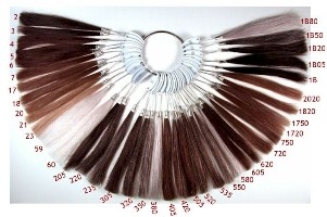 Hair darkness levels made in a hair color wheel