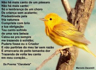 Clarabela