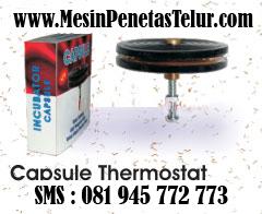 Capsule Thermostat Penetas Telur : Capsule