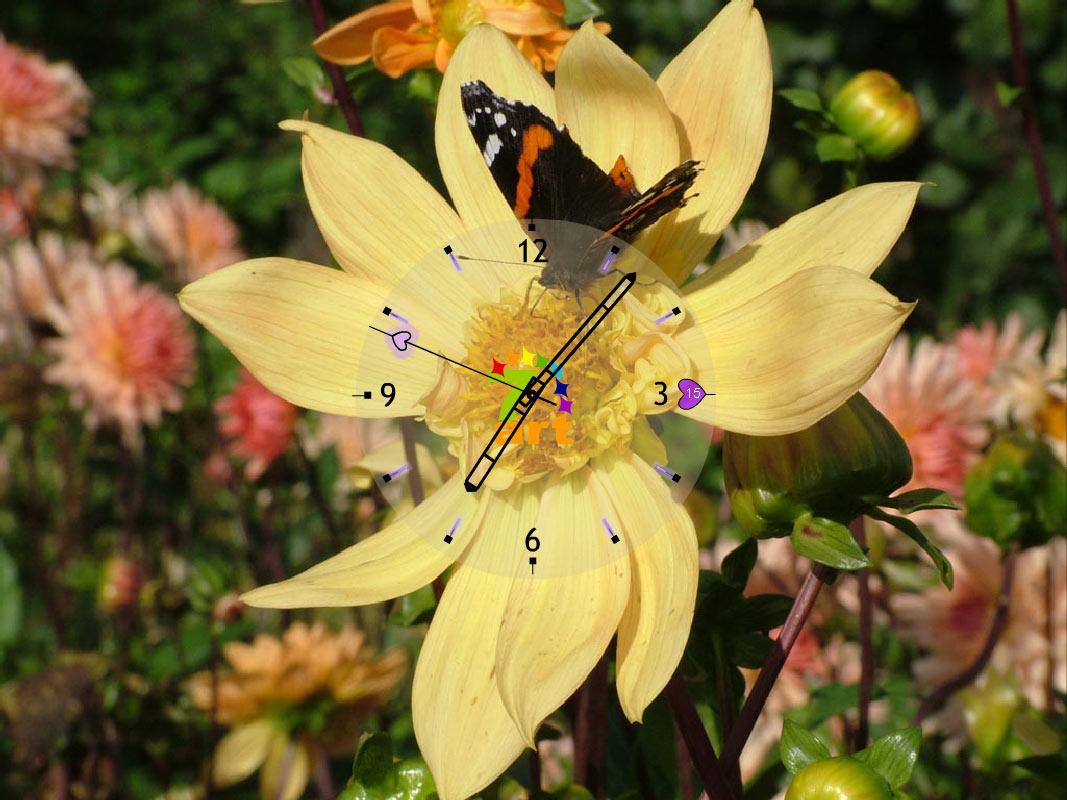 http://2.bp.blogspot.com/-lzIPBNTZrU8/UQ0aRKJ1wzI/AAAAAAAAOi8/8qTHPzdn-9w/s1600/The+Freshness+Of+Sweet+Flowers+With+Butterfly+Clock+Wallpaper.jpg