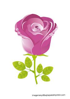 rosa en dibujo para imprimir