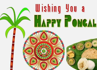 Mattu Pongal 2016 Messages Wishes SMS Quotes Greetings Collection