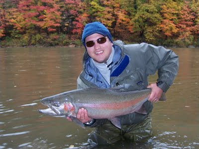 October Steelhead