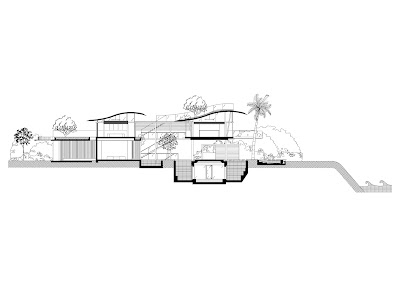 Modern luxury tropical house section