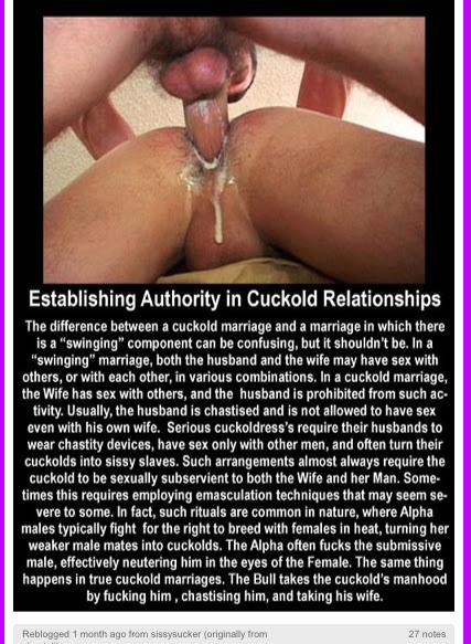 cuckold fucked