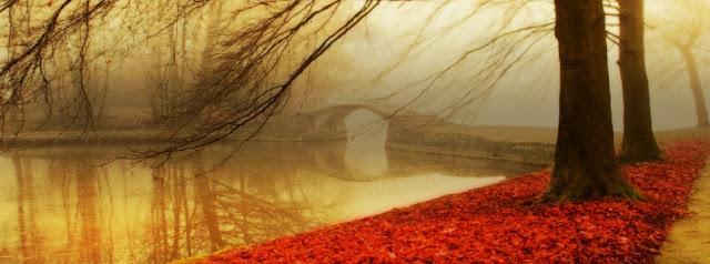 Sonbahar Kapak Fotoğrafları