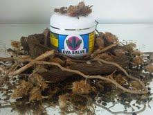 Dr  Sebi Sebi 100% Authentic Products Sebi Bio CellFood: EVA SALVE