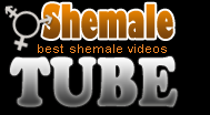 Tube Shemale - Free Shemale Porn Videos