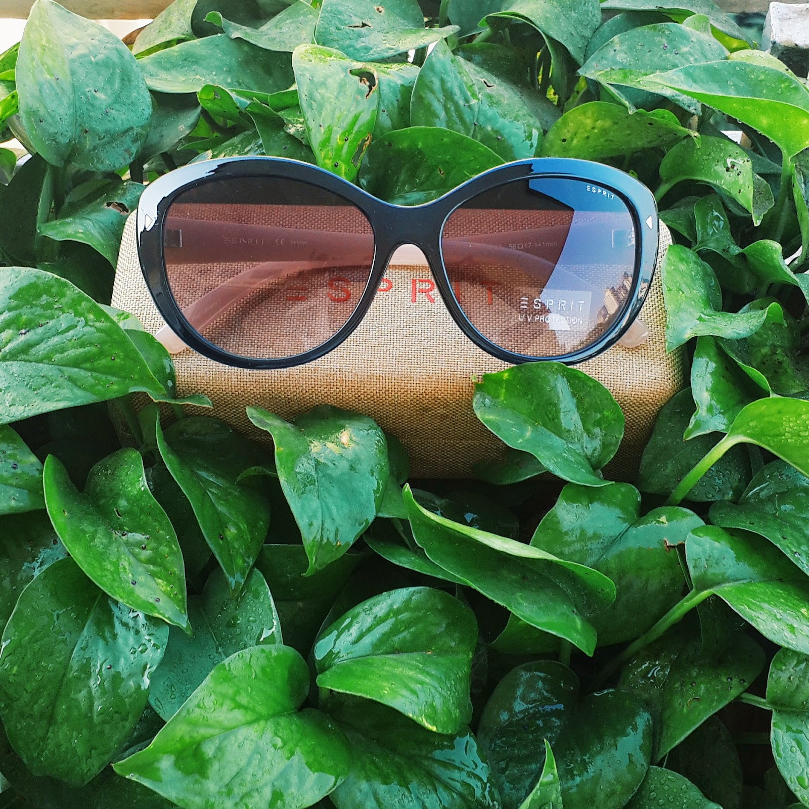 Dayle Pereira of Style File India shoots her Esprit cat eye framed sunglasses from Specs Appeal in a field of green leaves