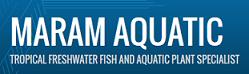 Maram Aquatic