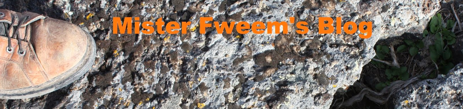 Mister Fweem's Blog