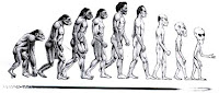 Man evolutive stages