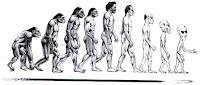 Man evolutive stages