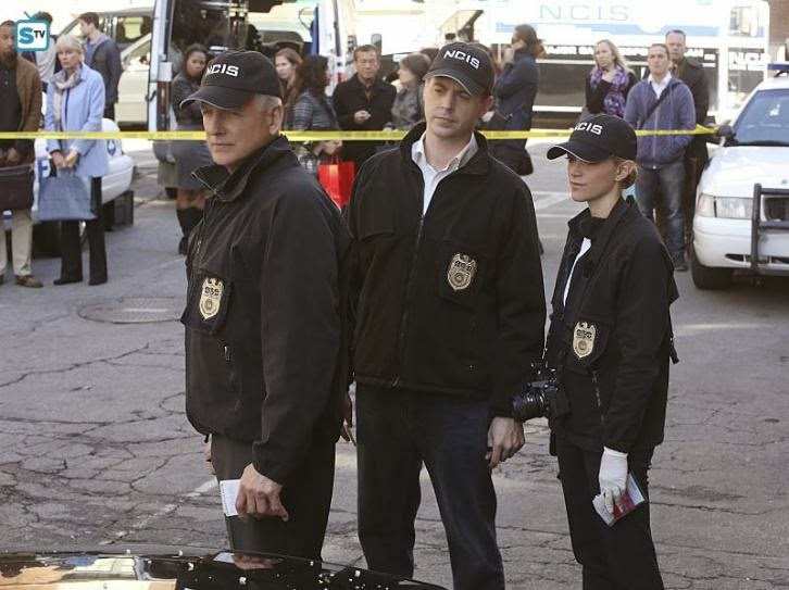 "NCIS - Status Update/Patience - Review: ""Enjoyable episodes"""
