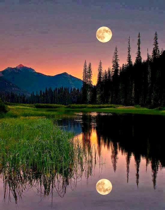 Malam Masa Rehat, Tidur Ikut Sunnah