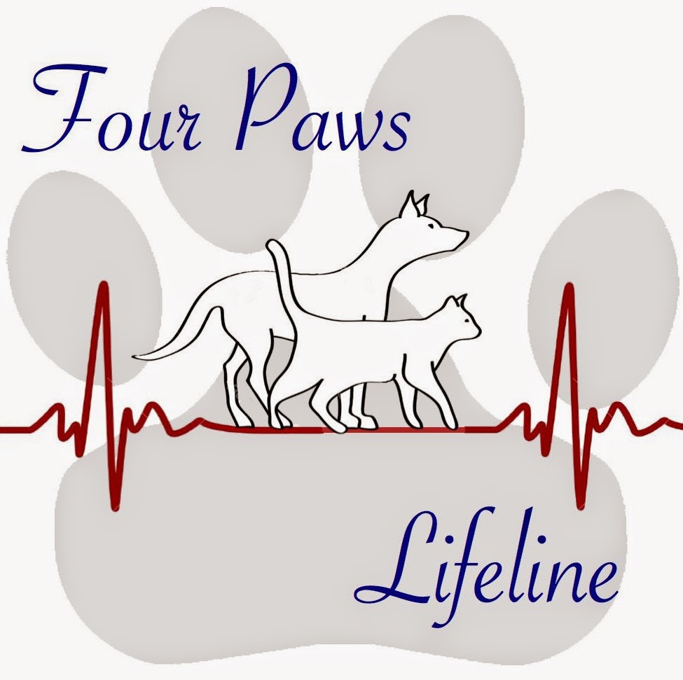 Four Paws Lifeline