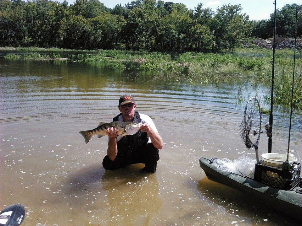 Don kayak news and adventures brazos river striped bass for Brazos river fishing