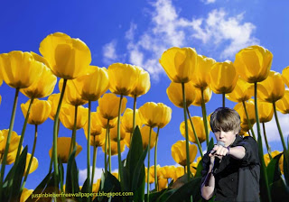 Wallpaper of Justin Bieber photo wallpaper Justin Bieber in Concert in classic Flowers Tulips Field background for the fans