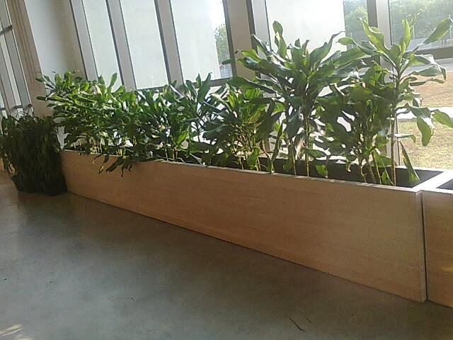 Planter box sebagai pembatas