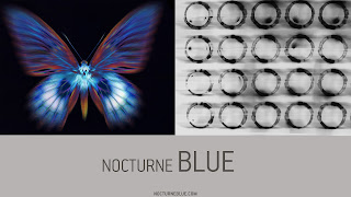 Nocturne Blue - Dutch Rall music media