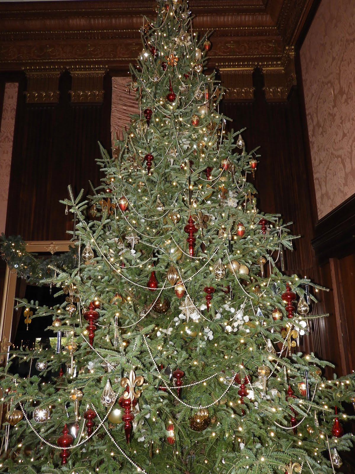 It\'s All About Purple: Longwood Gardens at Christmas!