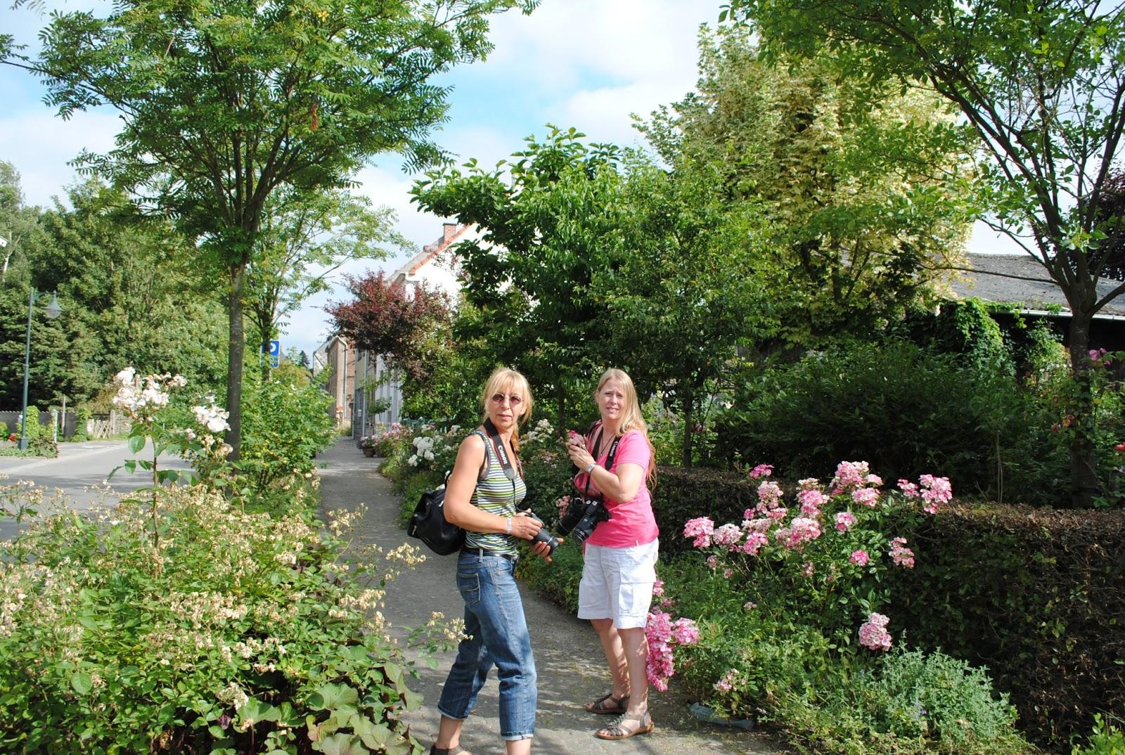 La passion d 39 anne marie les aiguillons un jardin digne for Vive le jardin ales
