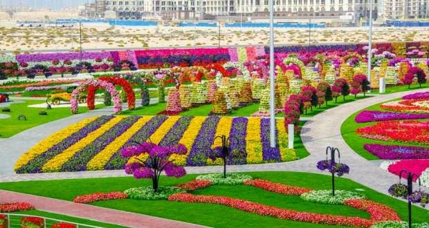 oasis mobiliario jardim:DubaiMiraclejardim #flores #jardim #jardinsfamosos #jardinsdomundo
