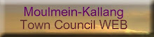 Town Council Web Site
