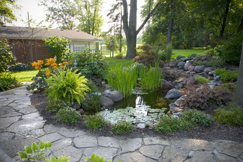 Aquascape your landscape backyard oasis from drab to fab for Landscaping around a small pond