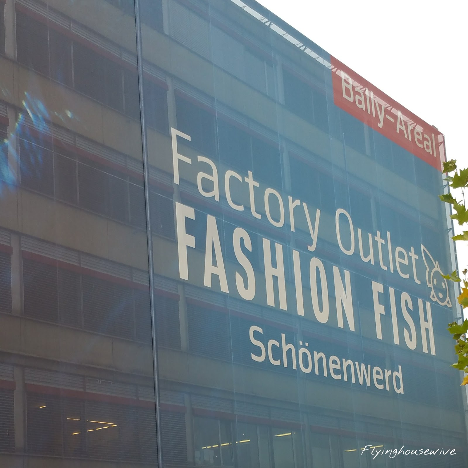 Flyinghousewives fashion fish factory outlet shopping for Fishing factory outlet