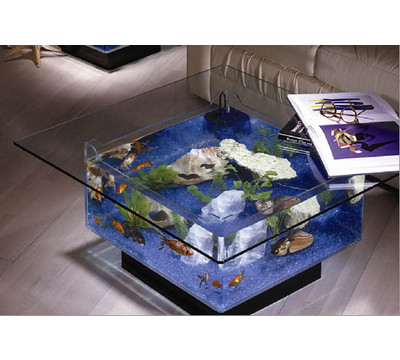 Cool Fish Tanks on Cool Fish Tank Decoration   Www Popgive Com