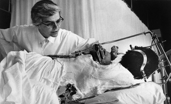 Dr. Jacquelin Perry, Surgeon Who Aided Polio Victims, Dies at 94